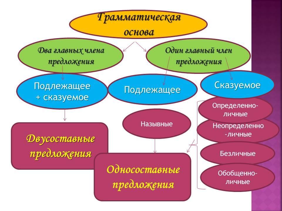 членом по языку