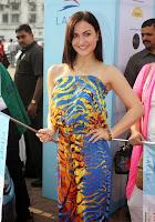 Elli Avram & Kunal Kapoor at Lavasa Women's Drive event