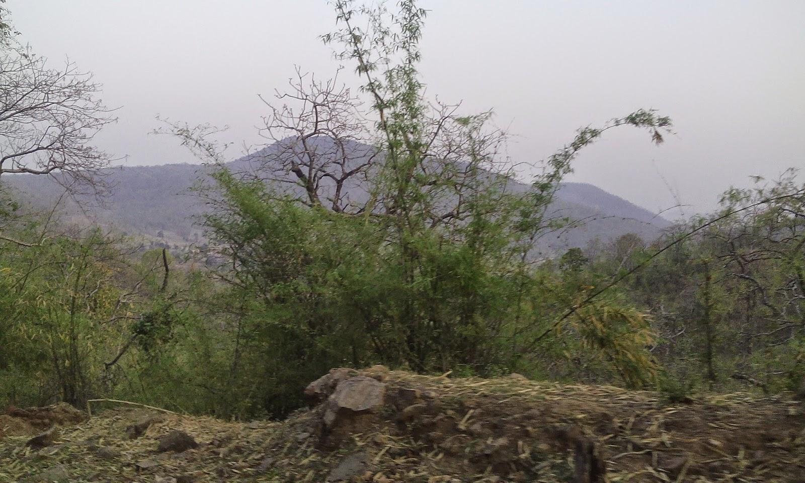 glimpse of satpura 1