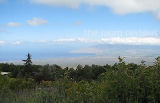 Kula, Maui, Ali'i Kula Lavender Farm, Maui Farms, Visit Maui, #Maui, #Hawaii