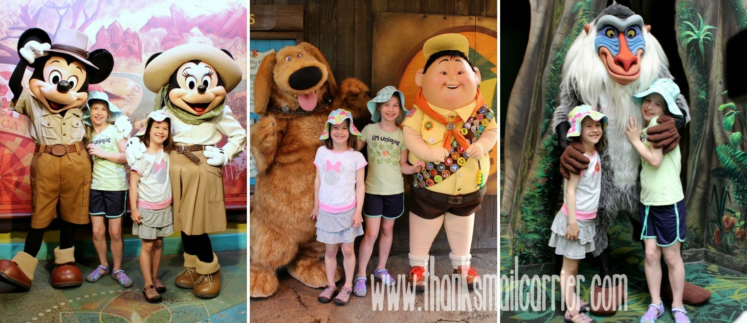 Animal Kingdom character meetings