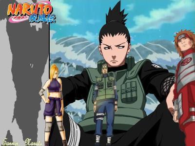 Naruto-Shippuden-273-vostfr.jpg
