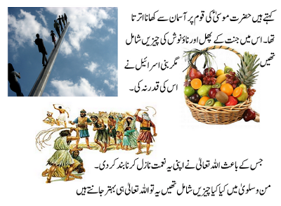 History of Ajwa Dates in Urdu Benefits of Ajwa Dates in Urdu