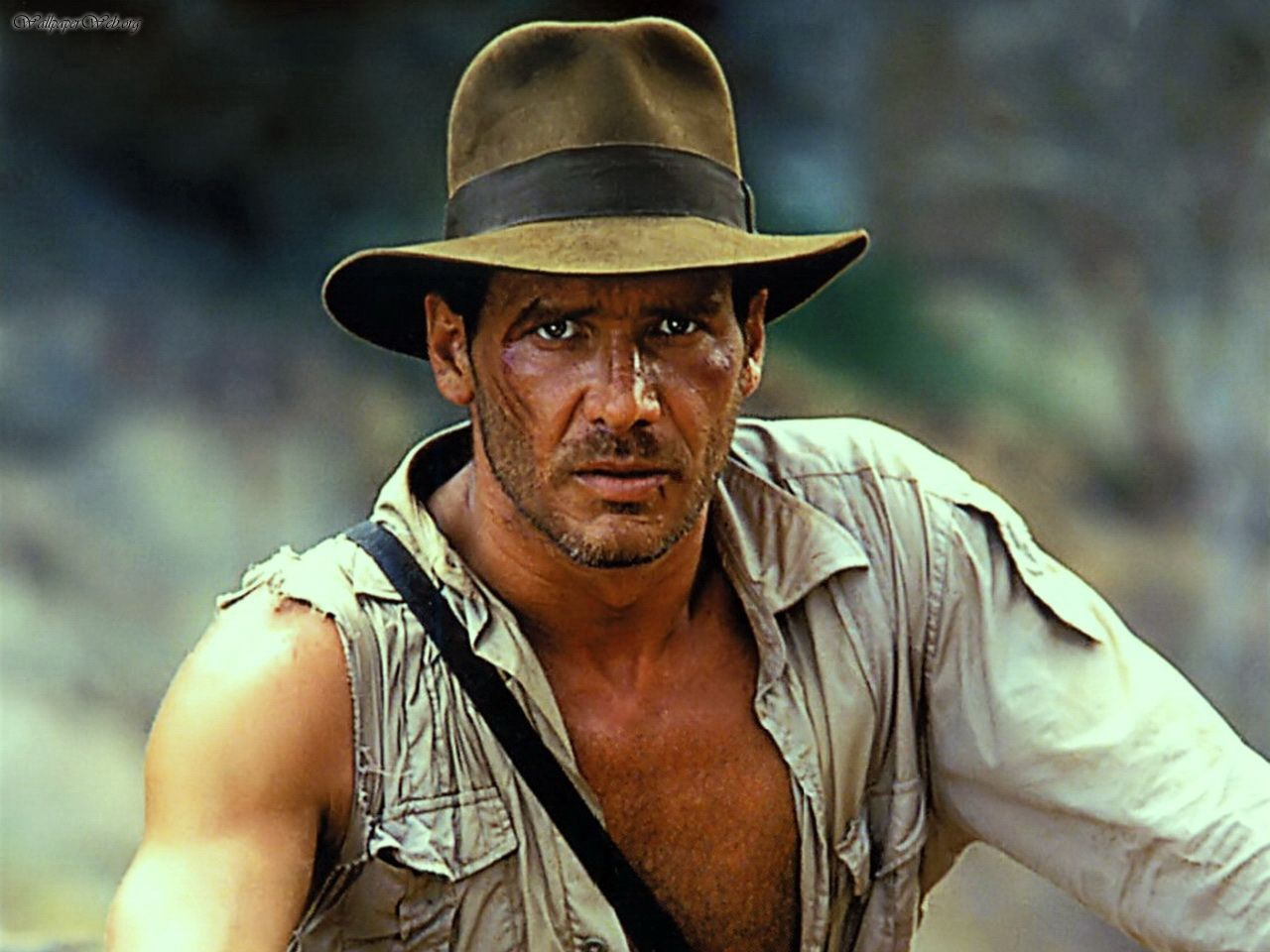 Indiana jones raiders of the lost ark imax fail total for The harrison