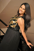Anchor Chitralekha latest glam pics-thumbnail-6