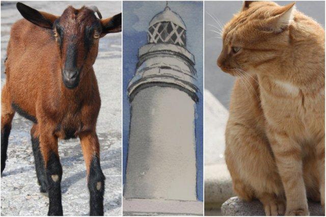 Cabra y gato en el Faro de Formentor, Mallorca – Pintura del Faro de Formentor