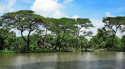 Kebun Bibit Wonorejo Akan menjadi Taman Edukasi