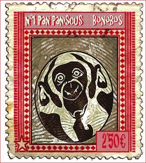 Pan Paniscus