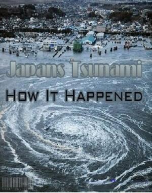 Sóng Thần Ở Nhật Bản - Japan Tsunami: How It Happened
