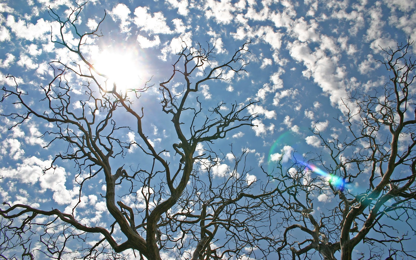 Compartiendo fondos fondos de pantalla paisajes naturales for Fondo de pantalla chulo