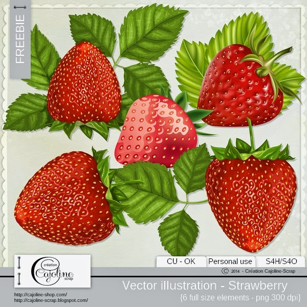 http://1.bp.blogspot.com/-yD1GEgk_zsI/U1J5bWXTQsI/AAAAAAAAUtk/GIKasuJa-1c/s1600/cajoline_vi_fraises_cu.jpg