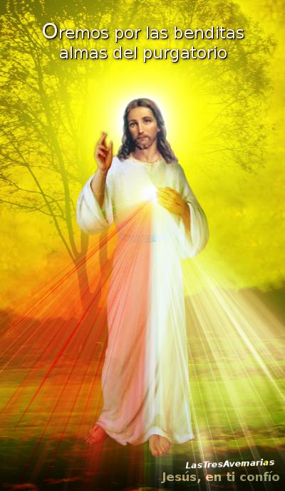 divina misericordia pide oracion por las animas benditas