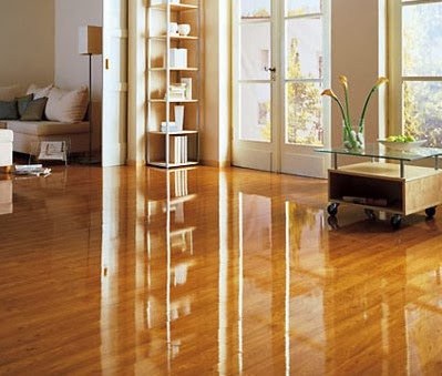 How to Pick the Best Laminate Floor Cleaner