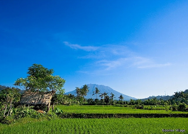 Things To Do in Bali 5