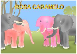 CUENTO : ROSA CARAMELO