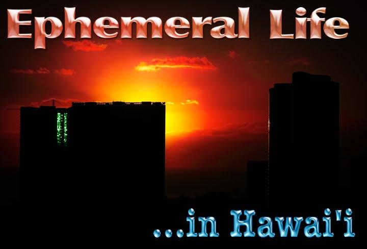 Ephemeral Life...