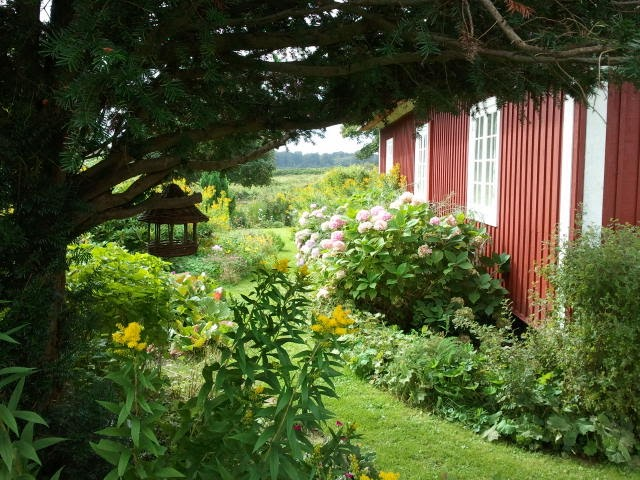 Northern light cottage garden for Northern light and garden