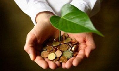 Bioeconomia,uma oportunidade para enfrentar os desafios da sociedade