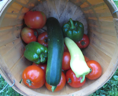 Tomatoes, Peppers, and zucchini