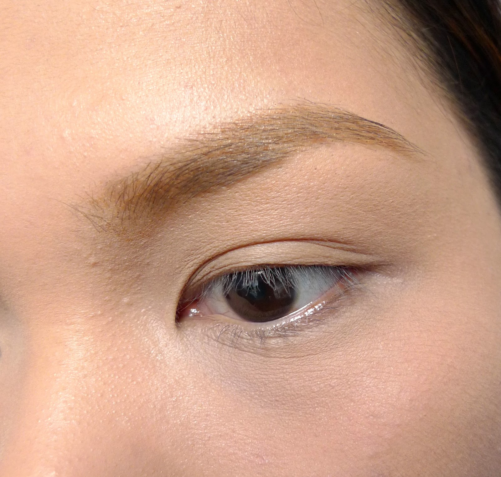 review: etude house color my brows in 2 | the beauty junkee
