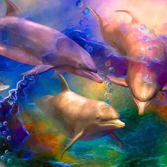 Reino cetáceo