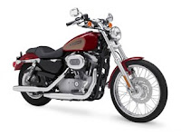 Hot Harley Davidson