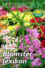 Blomsterlexikon i din mobil