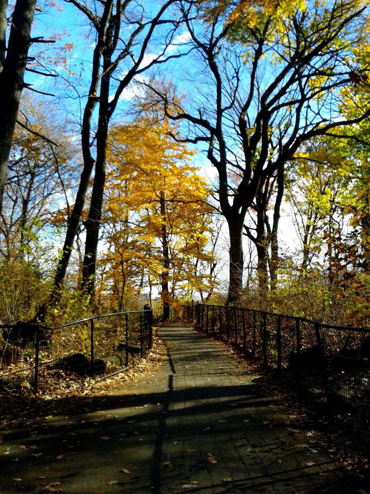 Balade Prospect Park Et Park Slope Brooklyn Plus
