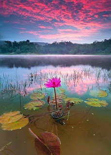 sinaran mentari pagi yang indah