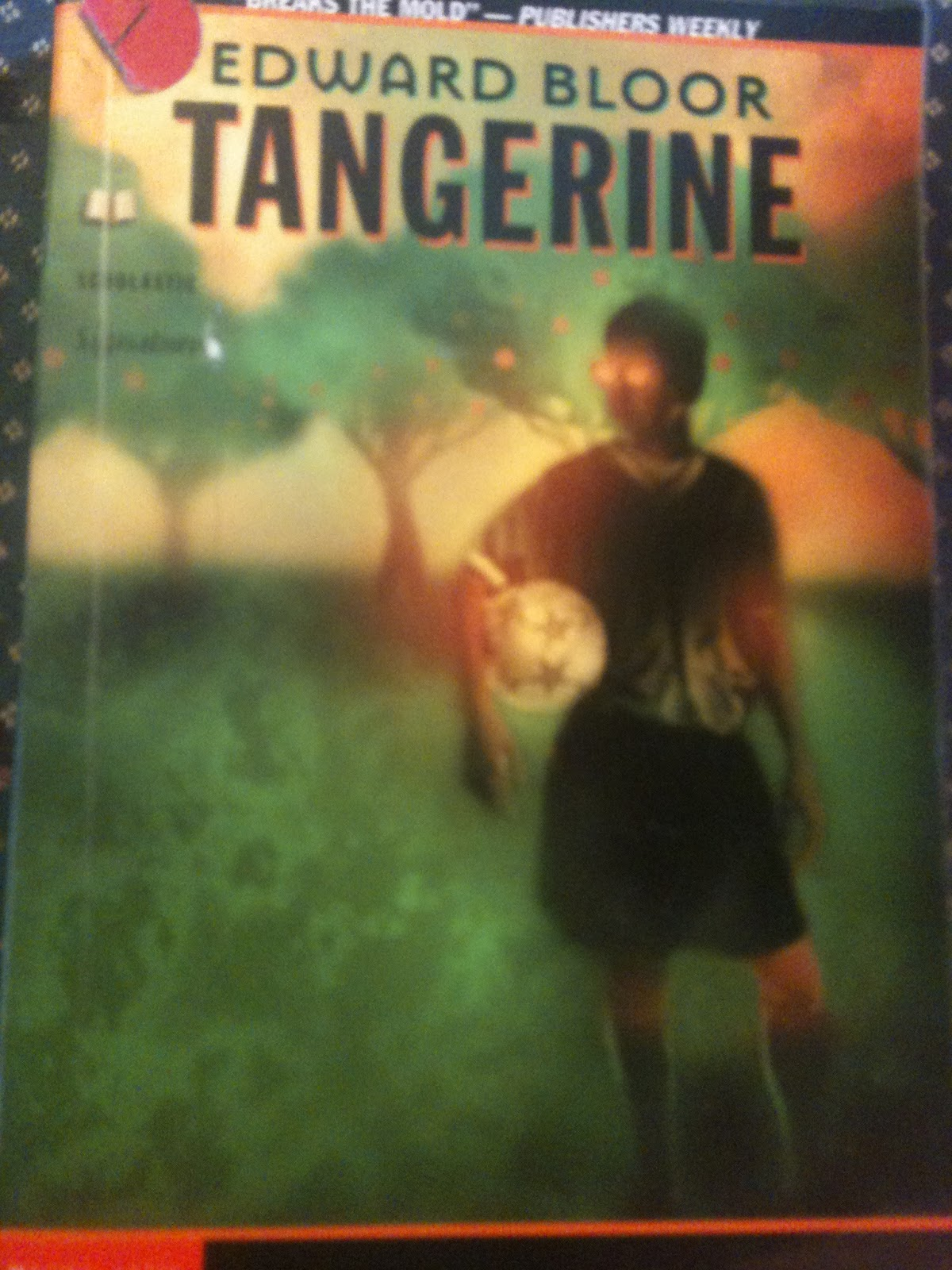 tangerine by edward bloor essay