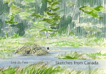 MY BOOK - SKETCHES FROM CANADA