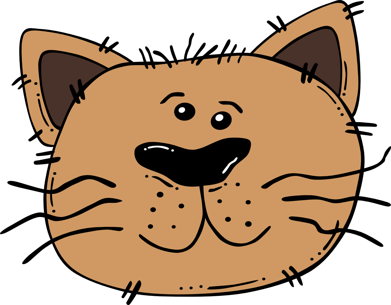 Imagen de gato