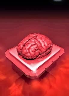 tips mempertajam daya ingat otak manusia