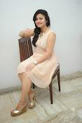vaishali patel latest glamorous photos-thumbnail-10