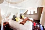 Zululand Tree Lodge Room