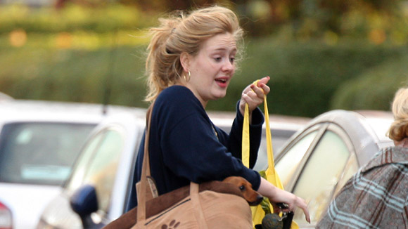 a biography of adele laurie blue adkins a british singer and songwriter Find out everything you need to know about british singer adele 29-year-old adele is an english singer and songwriter london as laurie blue adkins on may 5.