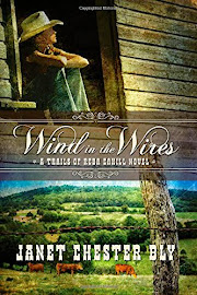 Wind in the Wires by Janet Chester Bly BOOK GIVEAWAY