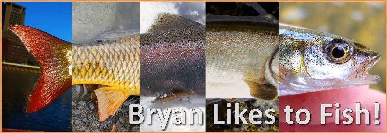 Bryanlikestofish