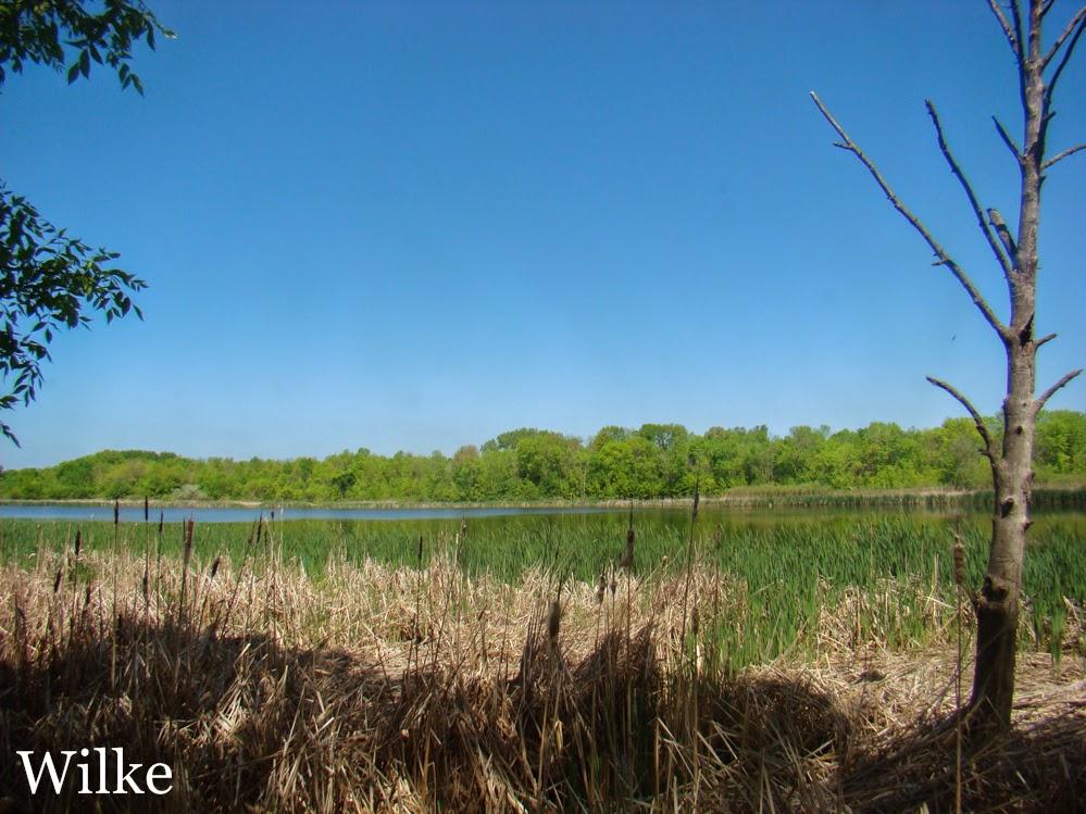 Grobschmidt Park's Mud Lake.