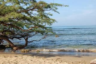 Las 3 Mejores Playas de la inolvidable Jamaica