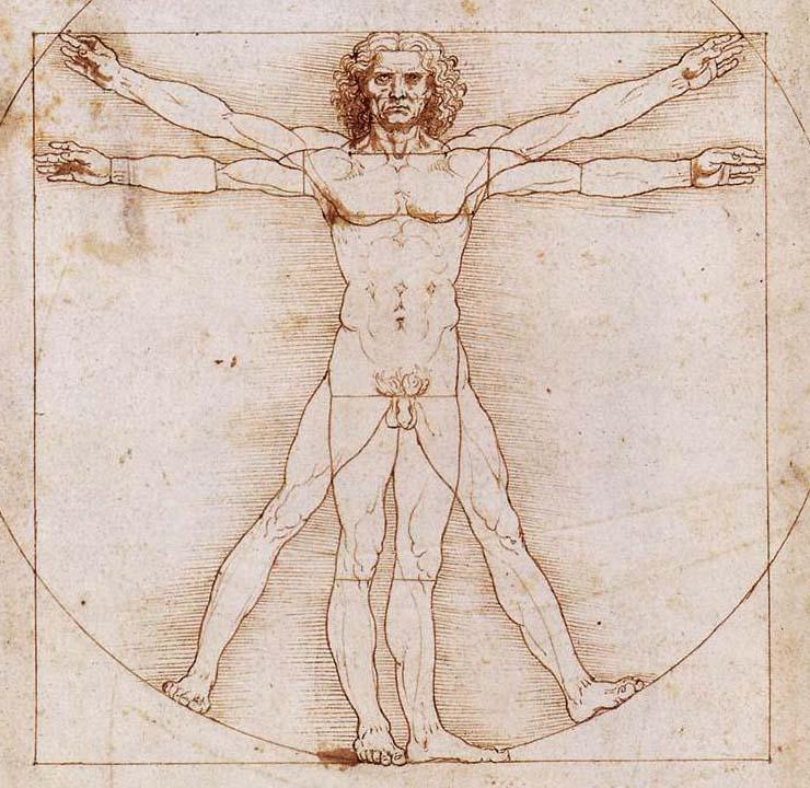Vitrubio de Leonardo Da Vinci