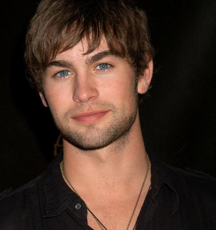 Hairy Handsome Man Chace Crawford From Usa