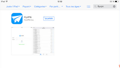 FlyVPN application appstore iPad Pro Air Mini