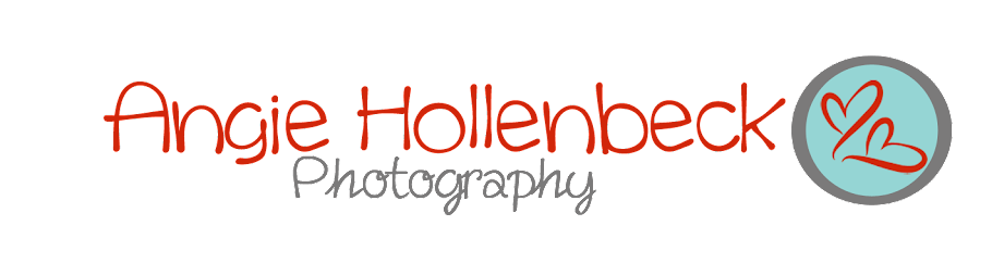 Angie Hollenbeck Photography, The Blog