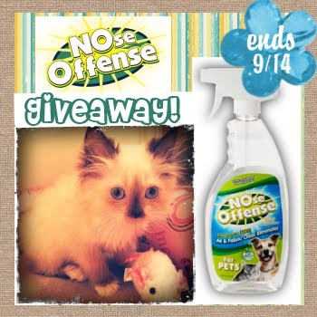 Eliminate Pet Odor, Febreeze, NOse Offense, Dog Odors
