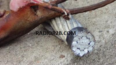 Seekor tikus diduga menjadi penyebab kebakaran sebuah mushola di pantura