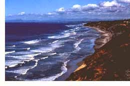 Torrey Pines State Reserve in So. California