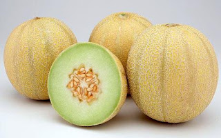 Teknis Budidaya Melon Dengan Nasa