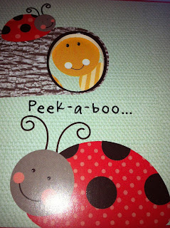 Peek-a-Boo Rainbow Board Book