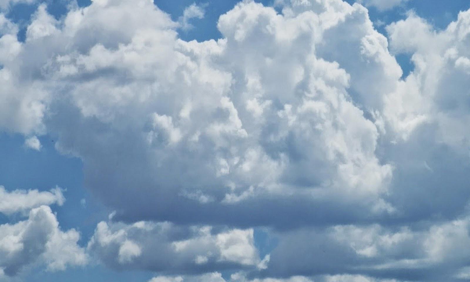 Tips Sederhana untuk Mengetahui Ramalan Cuaca